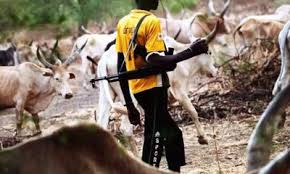 Herdsmen, farmers' clashes: Over 257 killed this year –FG